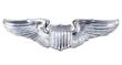 Aviator Wing Pin