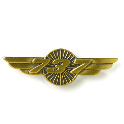 Boeing 737 Heritage Wings Pin