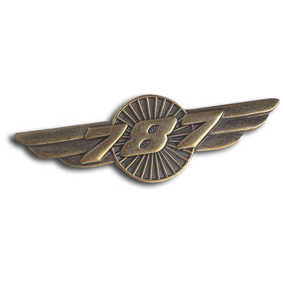 Boeing 787 Heritgage Wings Pin
