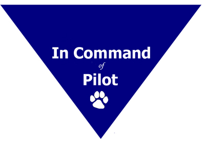 In Command of Pilot Triangle Bandana