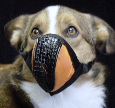 Aerox Canine Oxygen Mask