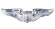 Aviator Wing Pin
