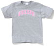 Boeing Logo Varsity Youth T-Shirt -  Pink on Gray