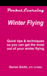 Winter Flying